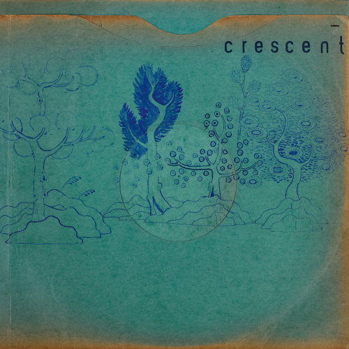"Crescent ""Resin Pockets"""